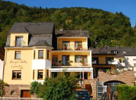 Hotel Photo: Weingut Pension Gibbert-Pohl