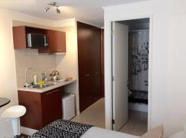 Luxury studio in Downtown Santiago Chile