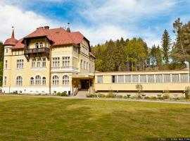 Hotel Photo: Hotel Zamecek Kaplice