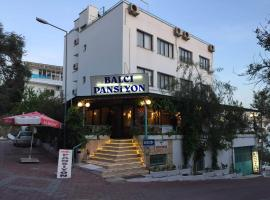 Balci Pension Kusadası Turkey