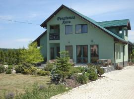 Pension Anca Dragomirna Romania