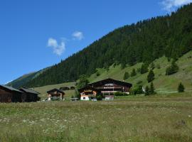 Hotel Photo: Hotel Restaurant Walliser Sonne