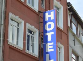 A picture of the hotel: Hotel Ekol