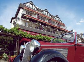Hotel Photo: Hotel Garni Rheinpracht