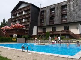 Hotel Photo: Hotel Pavla Vysočina