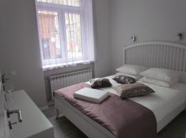 A picture of the hotel: Bright and cosy apartment in city center