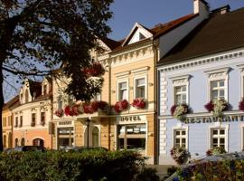 Hotel Photo: Hotel Restaurant Modrá Hvězda