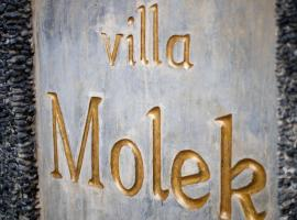 Hotel Photo: Villa Molek