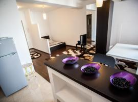 Hotel Photo: Baneasa Pipera Studio