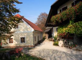 Hotel photo: Farm Soržev mlin