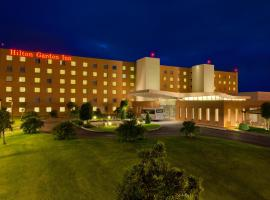 Hotel Photo: Hilton Garden Inn Rome Airport