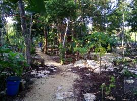 Quintana Roo National Park Campground & Hiking Tulum Mexico