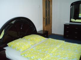 A picture of the hotel: Marijos Karpenko Apartaments