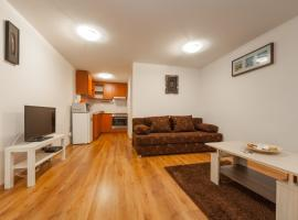 Central Studio and Apartments Pilvax köz Budapest Hungary