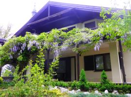 Hotel Photo: Guest House Zajec