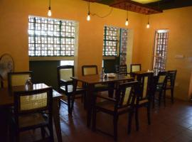 Electric Cats Bed & Breakfast Bangalore India