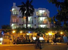 A picture of the hotel: Hotel Seril 1