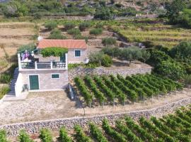 Hotel Photo: Holiday Home Vineyard house