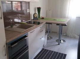 A picture of the hotel: Apartment Savica