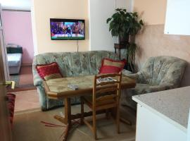 Hotel Photo: Apartment Prenociste Rivle