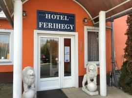 A picture of the hotel: Hotel Ferihegy