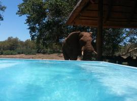 Maninghi Lodge Balule Game Reserve South Africa