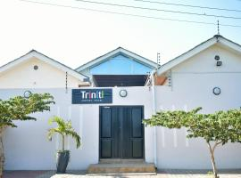A picture of the hotel: Triniti Airport Hotel