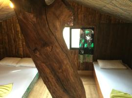 Hotel Photo: Olympos Inci Pansiyon