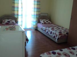 Hotel kuvat: Guest House Pajovic