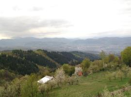 Hotel Photo: Visoko vacation home