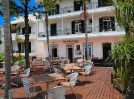 Hotel Photo: Flame Tree Madeira