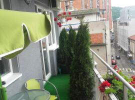 Hotel photo: House Prljevic