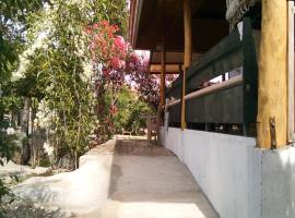 Campground to Bougainvillea Paradise Camp and Hostel Dauis Filipíny