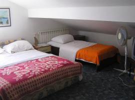 Hotel Photo: Guesthouse Curin