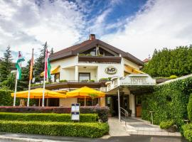 A picture of the hotel: Hotel Molnár