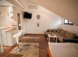 A picture of the hotel: Studio Apartmani Zagreb Altis