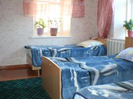 Hotel photo: Hostel Ilbirs
