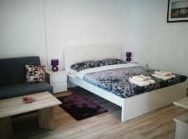 Hotel photo: Studio Apartman Dolenac