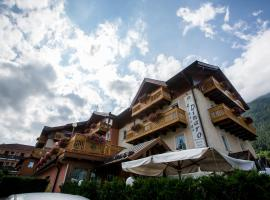 Hotel Photo: Albergo Dimaro Wellness Hotel