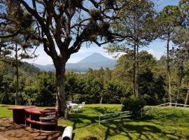 Hotel photo: Bosque Macadamia
