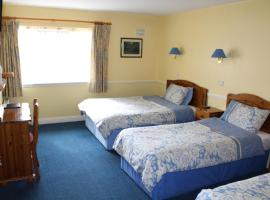Hotel Photo: Carlow Guesthouse