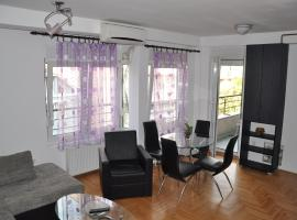 "Hotel Photo: Apartments ""Kragujevac"""