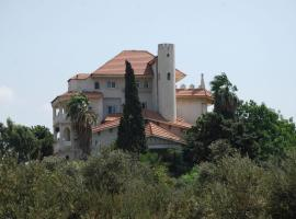 Hotel Photo: Chateau Des Oliviers Boutique Hotel