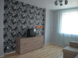 Hotel Photo: Apartment Frunze 49-16