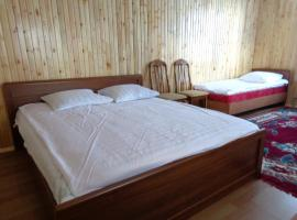 Hotel Photo: Guest House Tumar