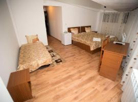 Hotel Photo: Hostel Ruxandra