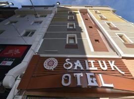 A picture of the hotel: Saltuk Hotel