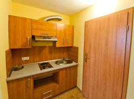 Hotel Photo: Apartamenty Business
