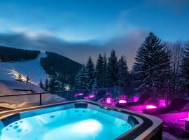 Hotel Photo: Pytloun Wellness Hotel Harrachov