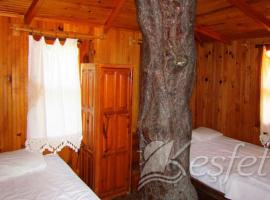 Hotel Photo: Jungle Bells Hostel